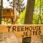 Ubytování na stromě vám vyčistí hlavu a vrátí energii